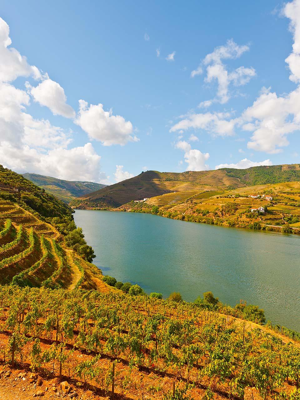 Região Douro